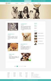 狗狗网站模板