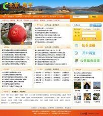北京昌平区政府网站设计 PSD