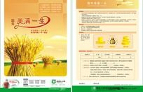 国寿年金保险宣传单