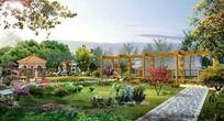 别墅景观庭院