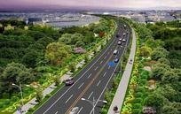 道路绿化鸟瞰图 PSD