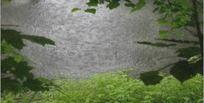 高清超大雨中小湖视频 mov