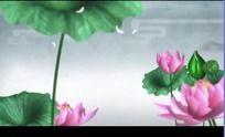 中国风山水动画荷花摇曳高清视频背景素材