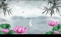 中国风水墨荷花仙鹤竹叶高清视频背景素材