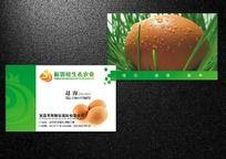 农业生态土鸡蛋名片
