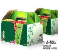 绿色果蔬手提礼盒设计