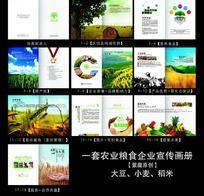 原创农业宣传画册