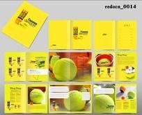黄色明亮网球画册 PSD