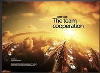 企业文化海报之团队协作