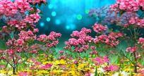 花丛视频 鲜花视频背景 mov