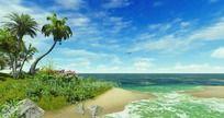 夏日椰岛风景视频