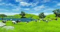 草原风景视频