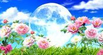 花好月圆牡丹花之歌歌曲视频背景