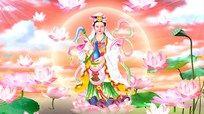 莲花池菩萨佛教视频素材