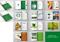 简洁农产品画册板式设计