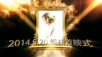 皇家贵族风格婚礼首映式AE