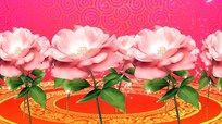 手绘玫瑰花动态视频素材