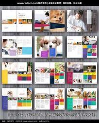 宠物画册版式设计