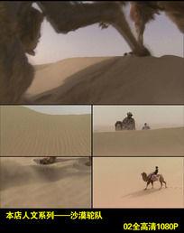 高清实拍沙漠骆驼队视频