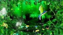 绿色大自然 梦幻仙境动态视频 mov