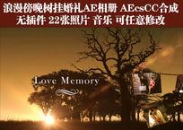 浪漫傍晚树挂照片婚礼AE相册 含音乐