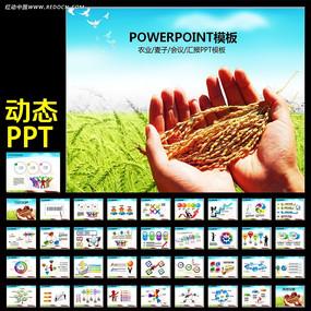 水稻粮食农业丰收大米生产加工PPT