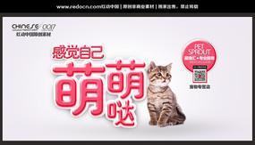 宠物专营店宣传海报
