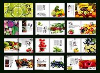 水果养生宣传画册
