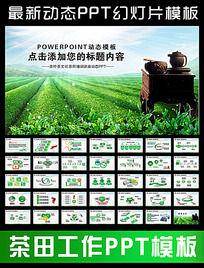 茶叶茶艺术文化会议报告PPT