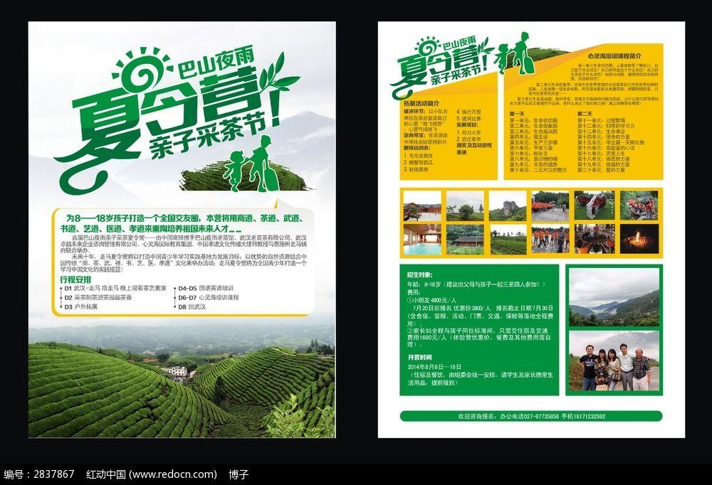 夏令营采茶活动宣传单设计模板下载(编号:2837867)