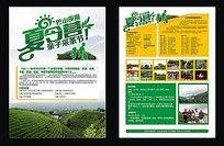 夏令营采茶活动宣传单