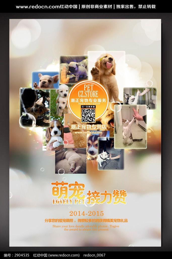 萌宠店活动促销海报psd素材下载_海报设计图片_编号