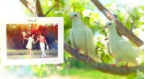 温馨浪漫婚礼片头AE模板