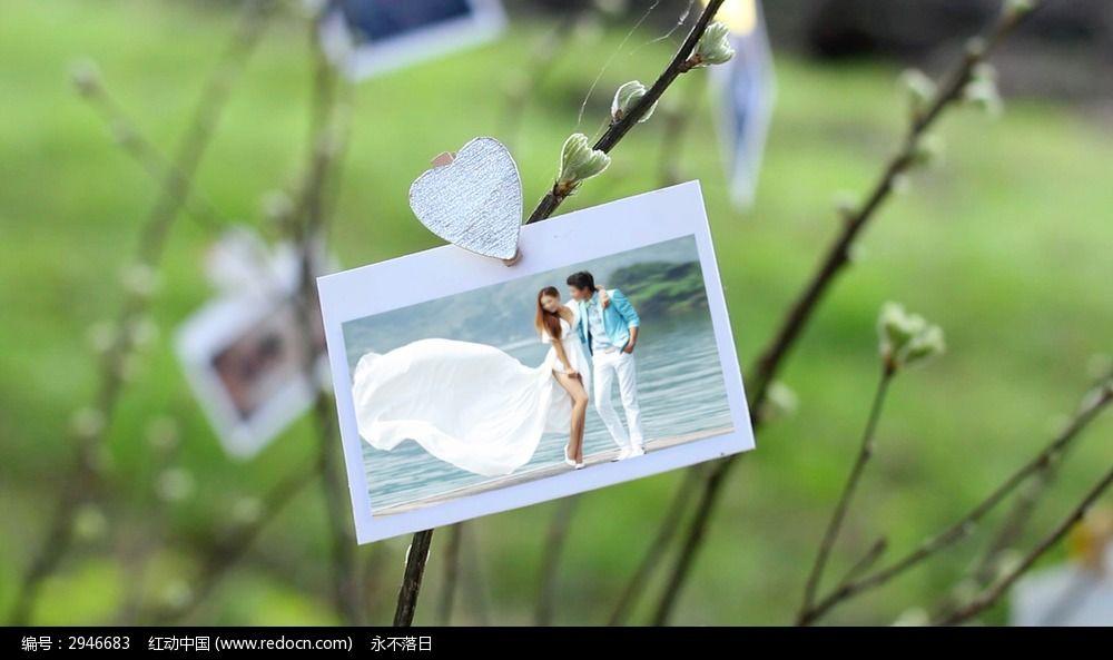 浪漫唯美婚纱照电子相册ae模板