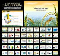 丰收稻田稻谷稻穗种子农业PPT