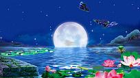 15款 唯美星空月亮视频背景mov下载