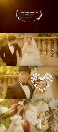 白色花纹装饰婚纱展示视频