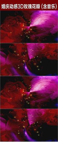 11款 玫瑰花瓣飘落视频素材mov素材下载