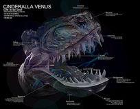 恐龙信息可视化 PSD