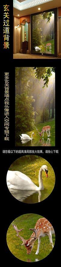 美丽大自然动物过道玄关图