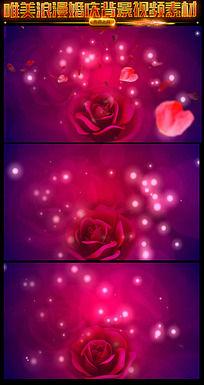 玫瑰花开场视频