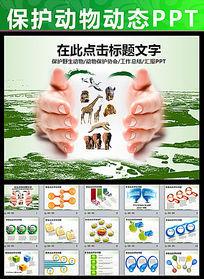野生动物保护协会PPT模板