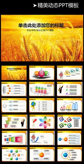生态农业ppt