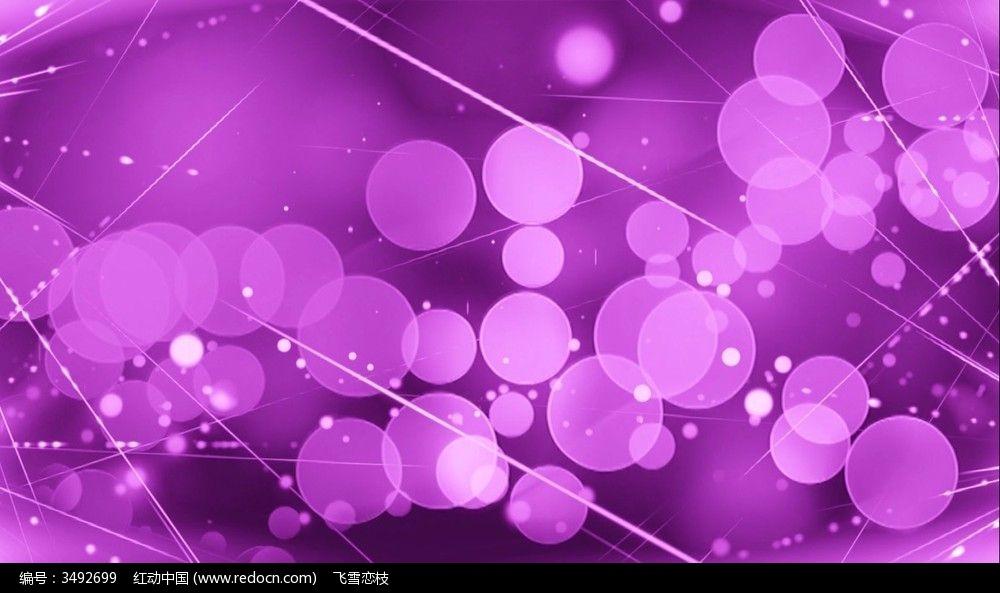 素材_紫色梦幻线条及圆圈粒子浮动视频素材