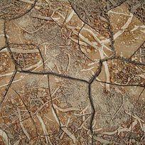 龟裂大地植物叠加背景肌理印花图案 TIF