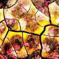 龟裂花卉叠加背景肌理印花图案 TIF