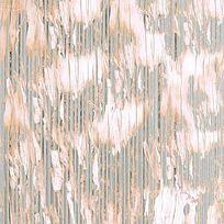 树木纹理北京肌理印花图案 TIF