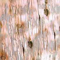 树木纹理背景印花图案 TIF