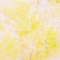 植物晒白曝光肌理背景印花图案 TIF