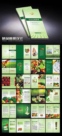 酵素养生品牌画册
